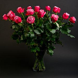 roze-rozen-mama-25-11-2013